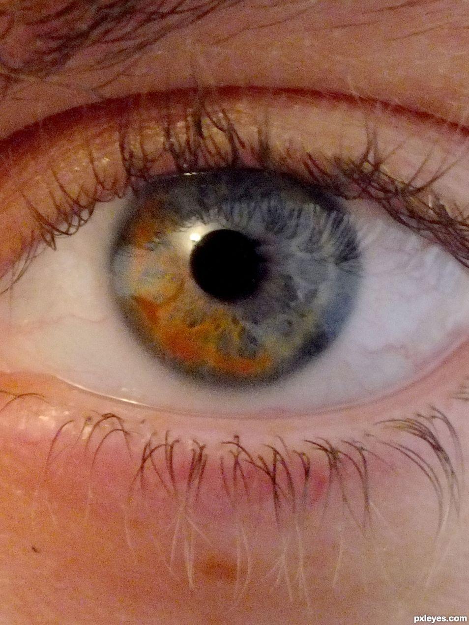 Heterochromia iridum picture, by Taff for: eyes ...  Heterochromia i...