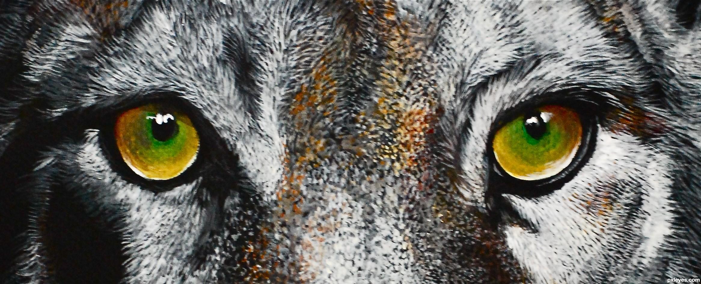 animal eyes wild eye animals drawing drawings draw google pxleyes hi res vision score views contest favs sbs rank