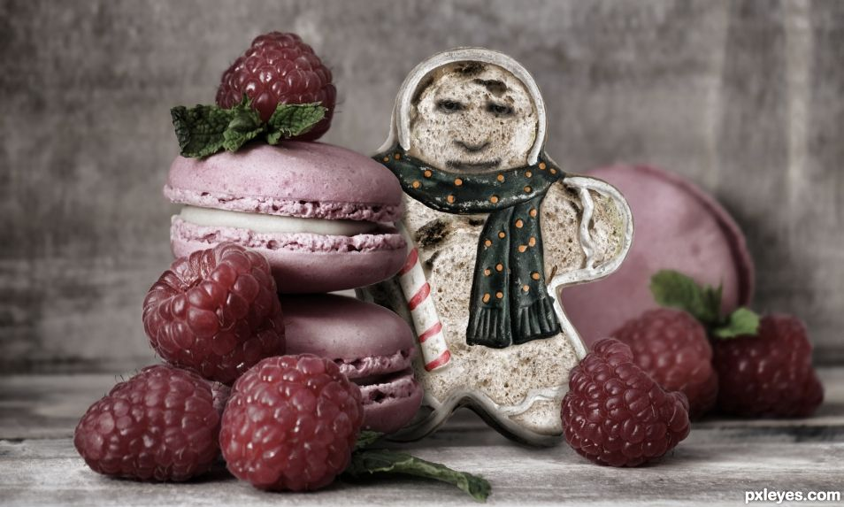 Moldy Gingerbread Man with Raspberry Macrons