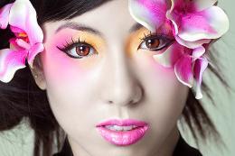 Geisha Picture