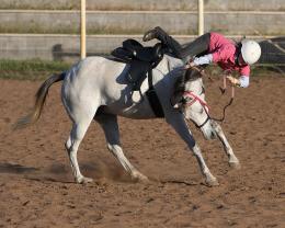 Horseriding....