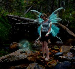 ButterflyFairy