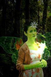FairyNight