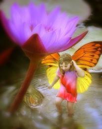FairyintheLotusPond