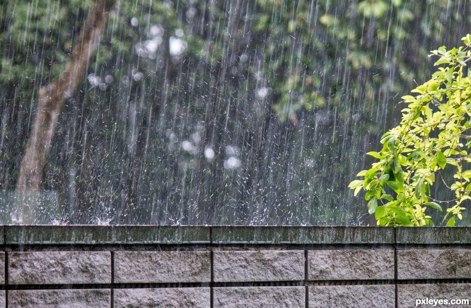 Its wet