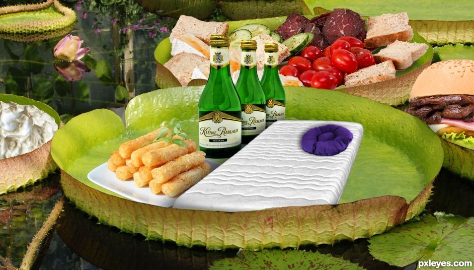 Snack Bed on a Lily Pad