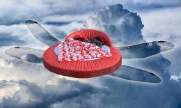 Dragon Fly Bed  (Art of Sky Sleeping)