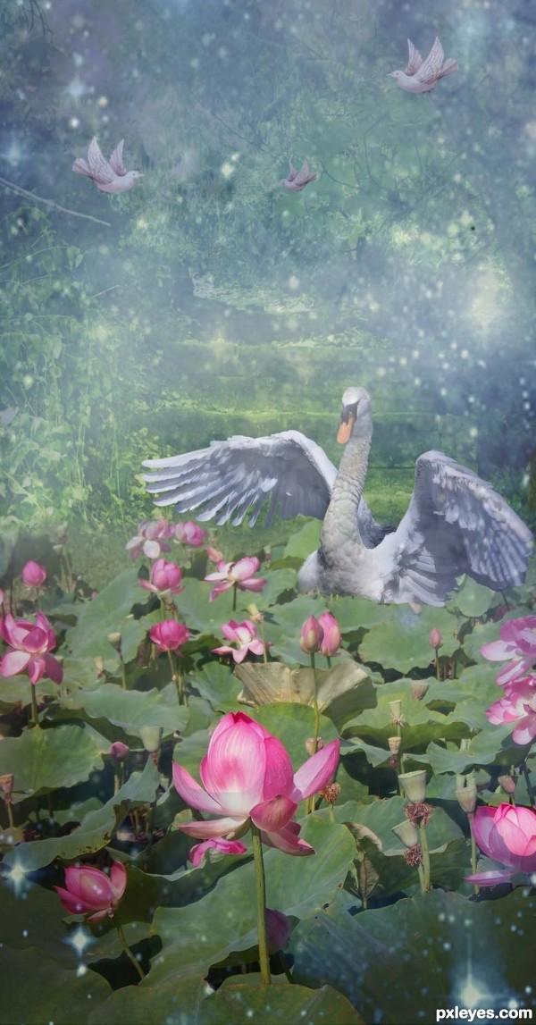 Dreamy Water Garden