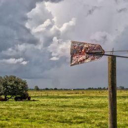 Floridaranch