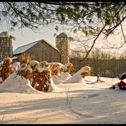 WinterStores