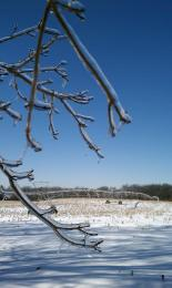 icefarm