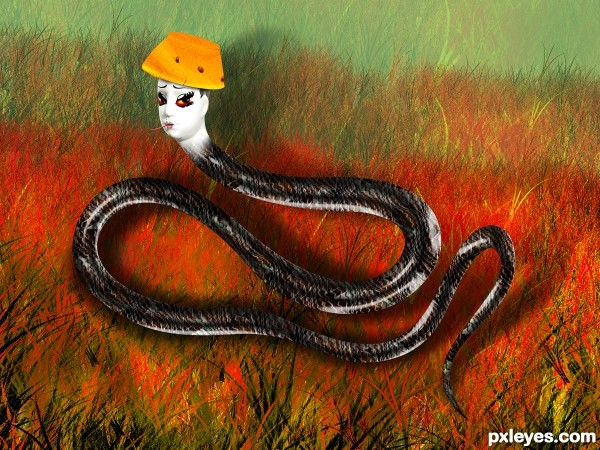 Fashion Snake