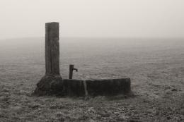 FoggyFaucet