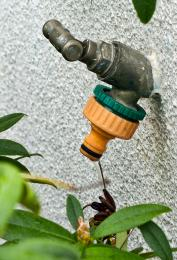 Gardentap