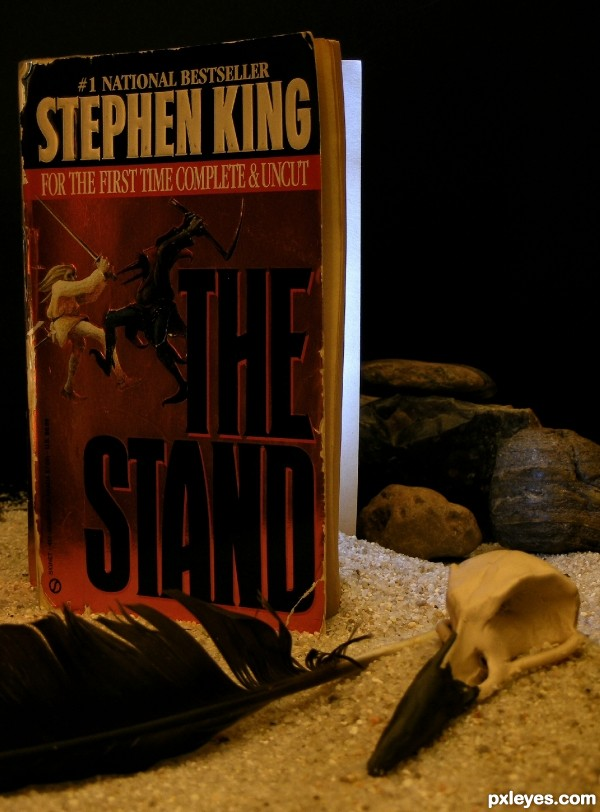 The Stand by Stephen King photography picture