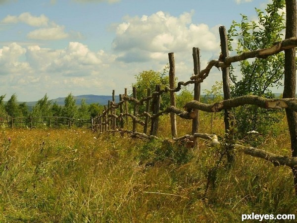 Farm fence photoshop picture)