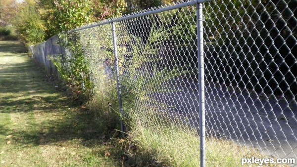 no frills chain link fence