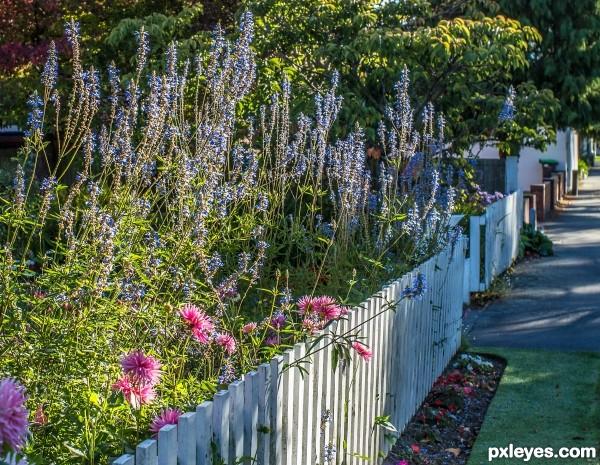 Gardners fence