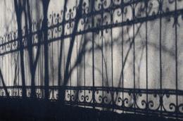 Shadowlandfence