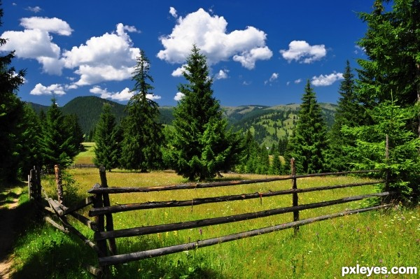 Alone fence
