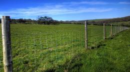 fences4bd06dc2e7d25
