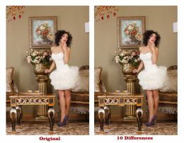 FIND THE 10 DIFFERENCES.... EASY TASK