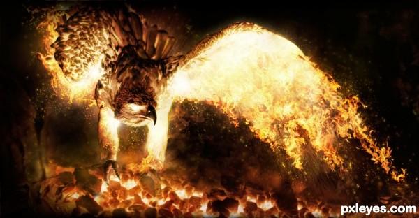 Creation of Phoenix Next: Final Result