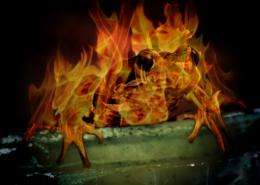 FrogenFlambe