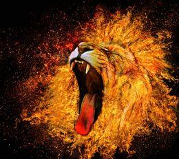 Roaring Wildfire