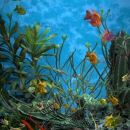 UnderwaterBallet