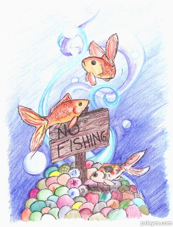 No Fishing!!