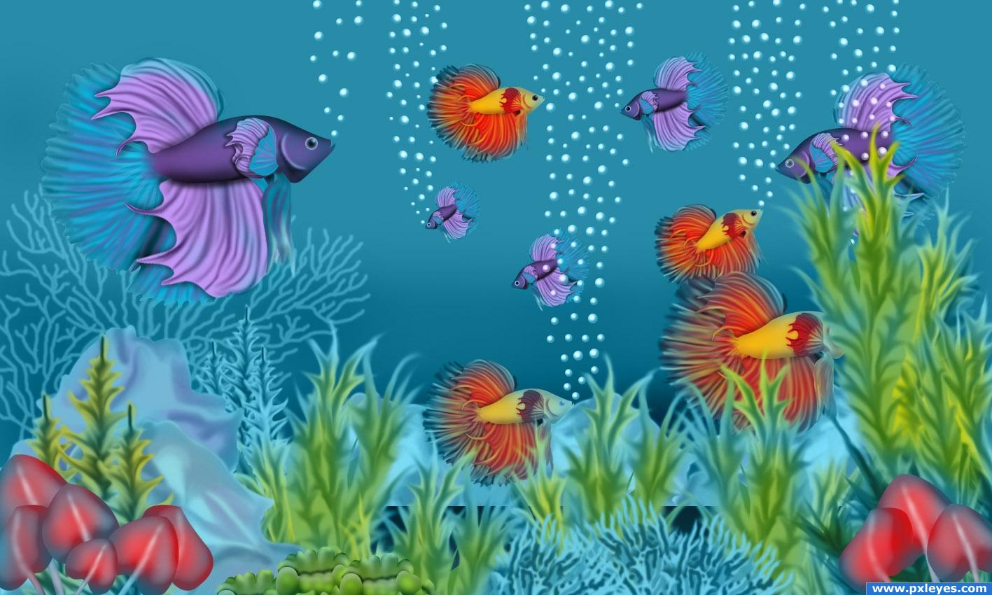 Fish tank drawing pictures - Crazy Fish