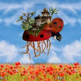Ladybirdisland