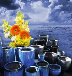 flower pots Picture