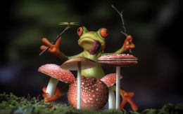 Froggy Rich - Shroom Drummer Picture