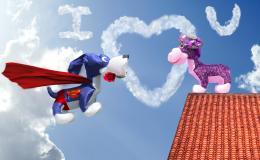 Superdogisinlove