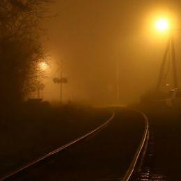 FoggyLine