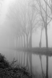 Foggy channel