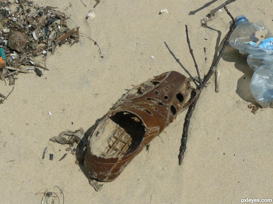 Sea shoe