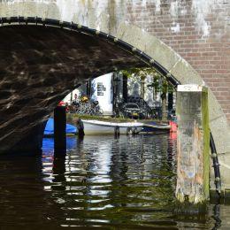 Through the Bridge Picture