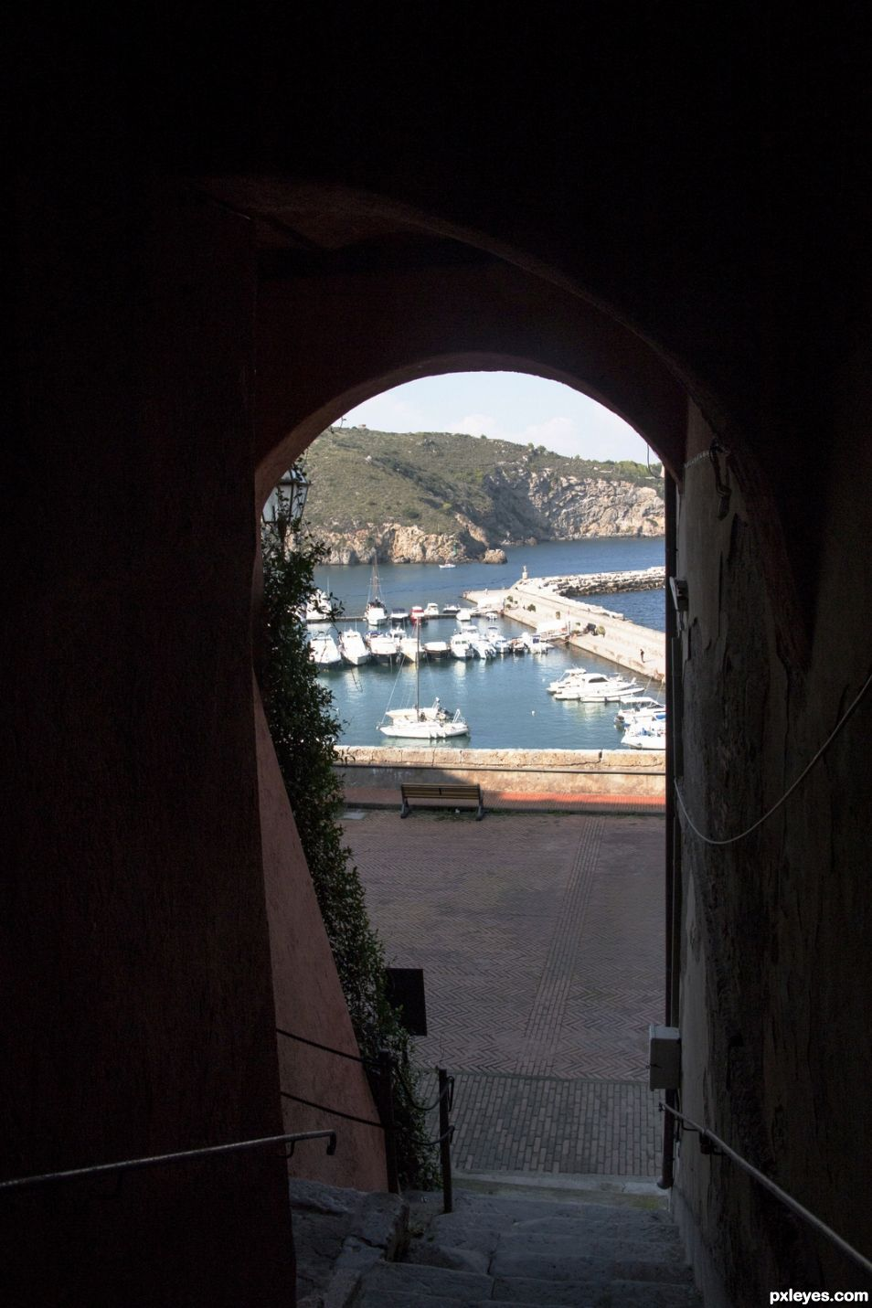 the little harbor