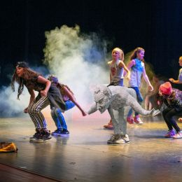 Danceprogram