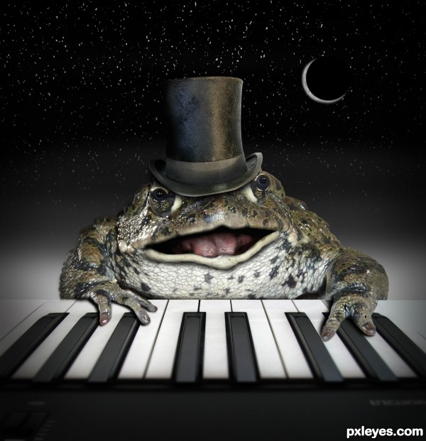 The Piano Frog photoshop picture)