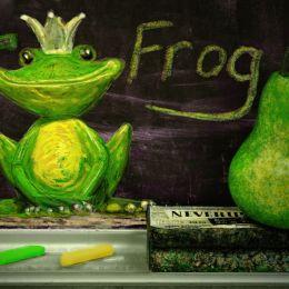 Fisforfrog
