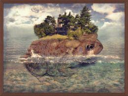 Toad Isle