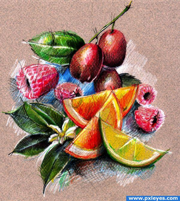Fruit Sketch Drawing Sketch