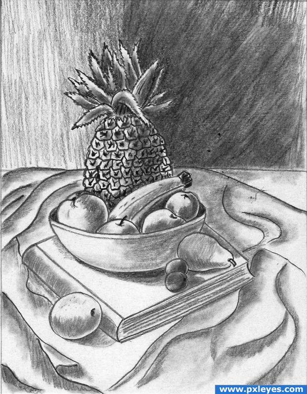 Fruit Pencil Drawing