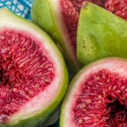 red figs Picture