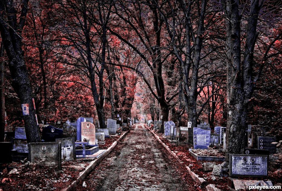 Graves - (infrared)