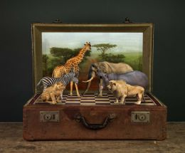 safari chess Picture